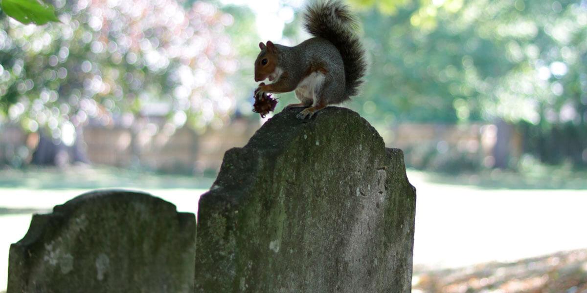 Gravestone in Priory Church Cemetery